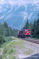 CP AC4400 pulls an intermodal freight through the Kicking Horse Pass. Photo taken from the Walk Through the Past trail. Nikon D50, 55mm, 1/250s at F8.